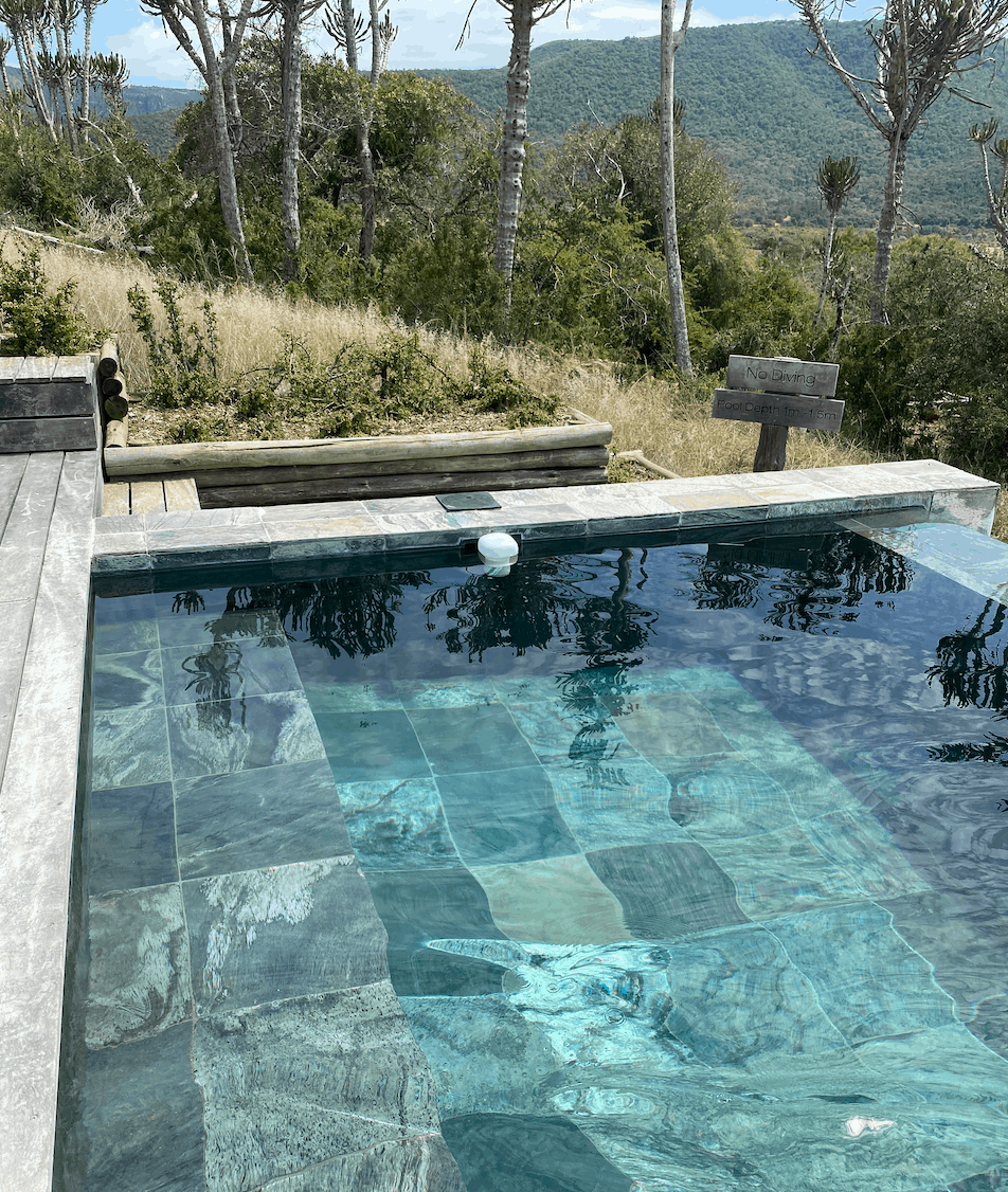 Dark blue tiled outdoor swimming pool surrounded by trees