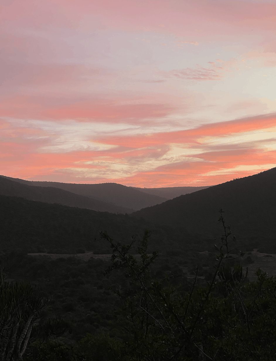 Bright Pink Sunrise at South African Game Lodge